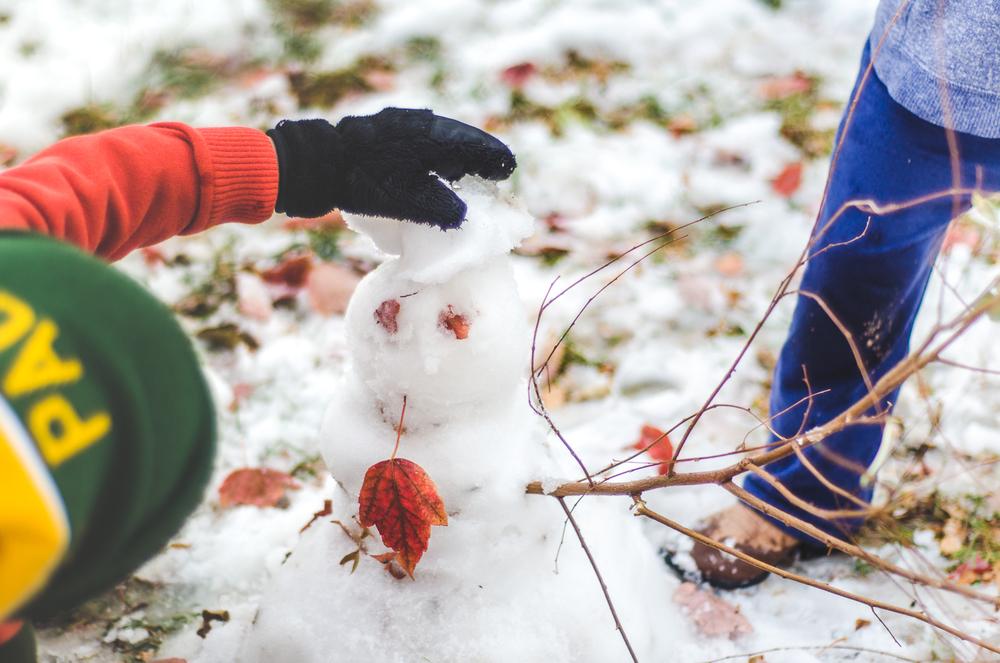 Nov 2015 Snow Day-BLOG-7272.jpg