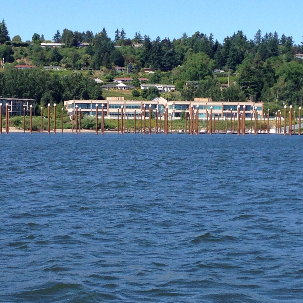 pilings and condos with water.JPG