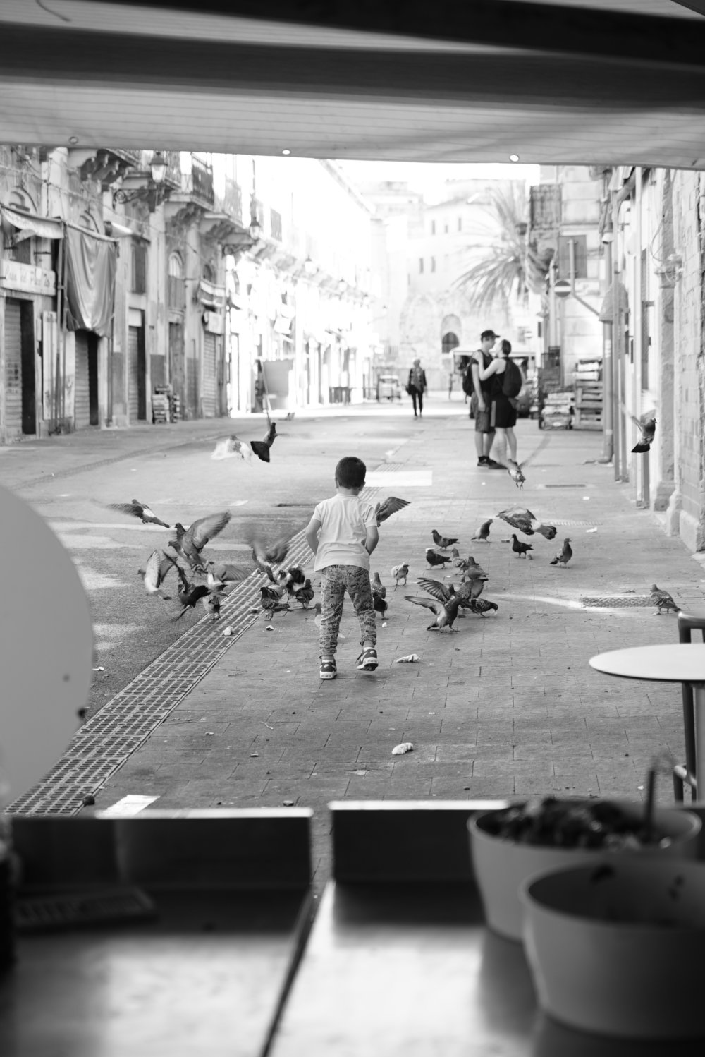 pigeons on the streets of sicily.JPG
