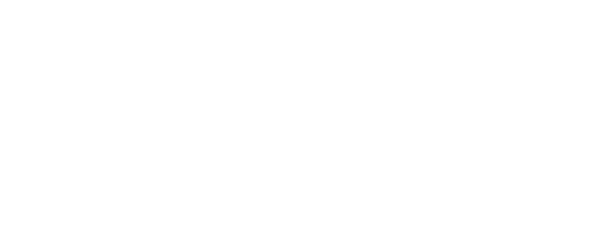 Second Nine Consulting
