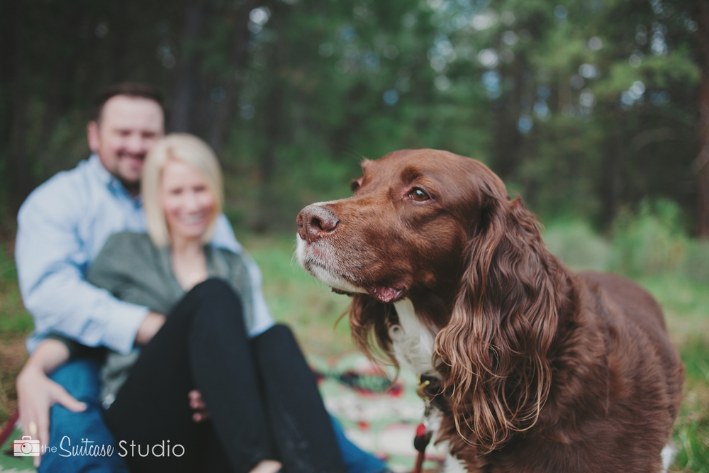 Bend, Oregon Lifestyle Wedding Photographer -  The Suitcase Studio - Engagement Photos at Big Eddy - Picnic with Dog