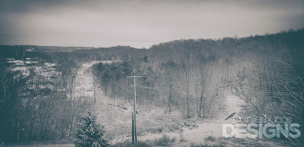 Landscape Wide WM.jpg