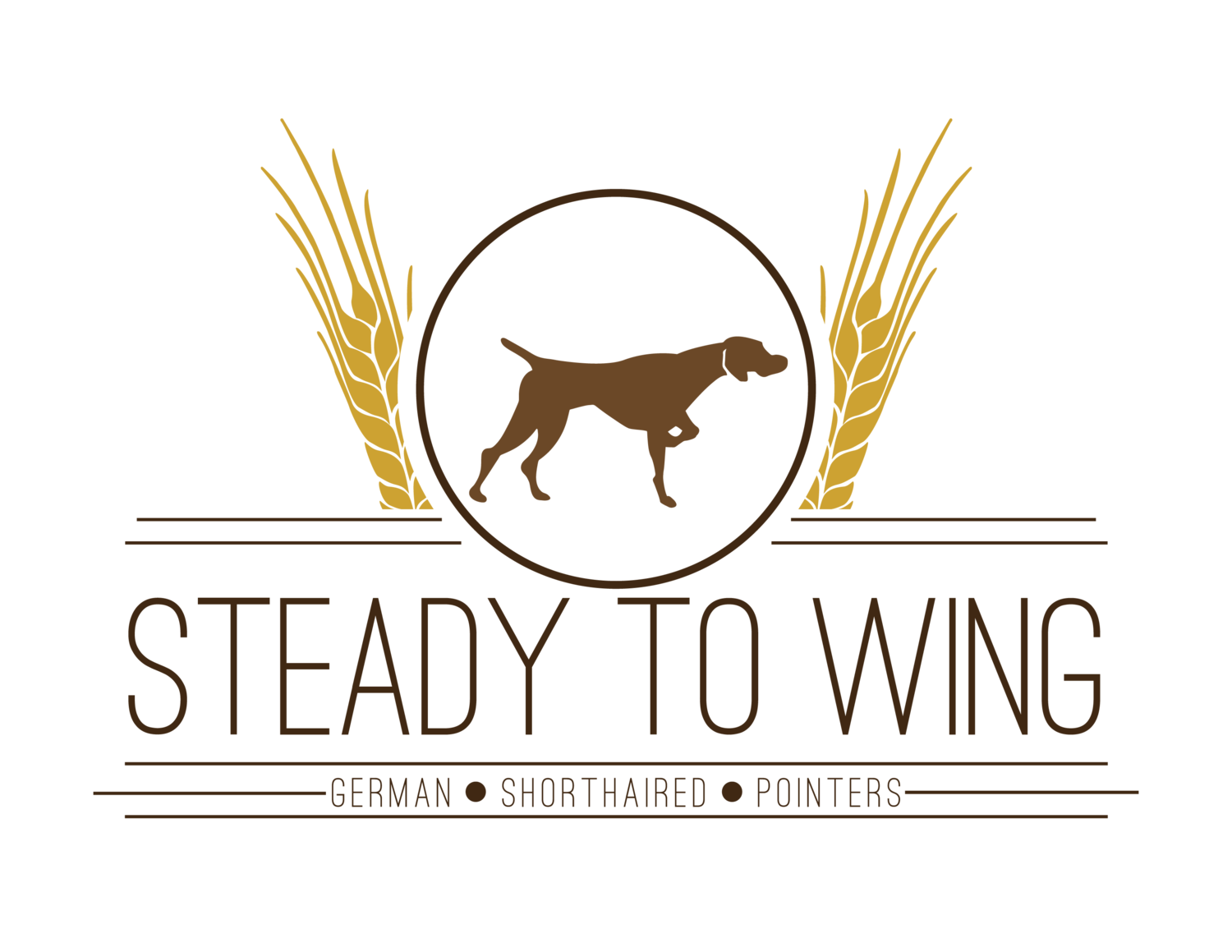 German Shorthaired Pointers | Steady to Wing Shorthairs