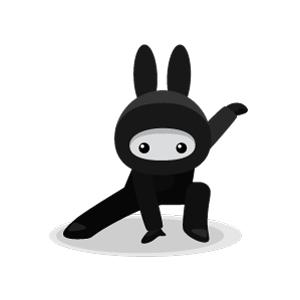 CMJ_Ninja_Stance.jpg