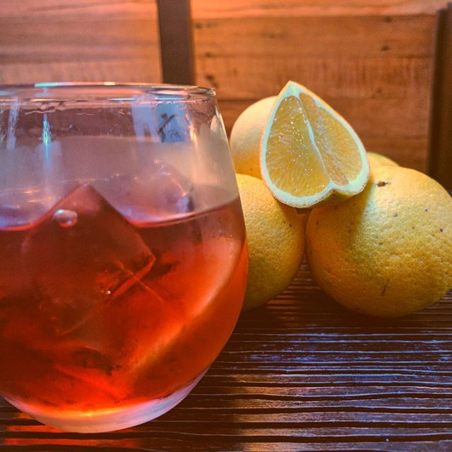 We're keeping it local by using Brunswick grown oranges in our Negronis. #thankssteve #singleorigin #negroniweek