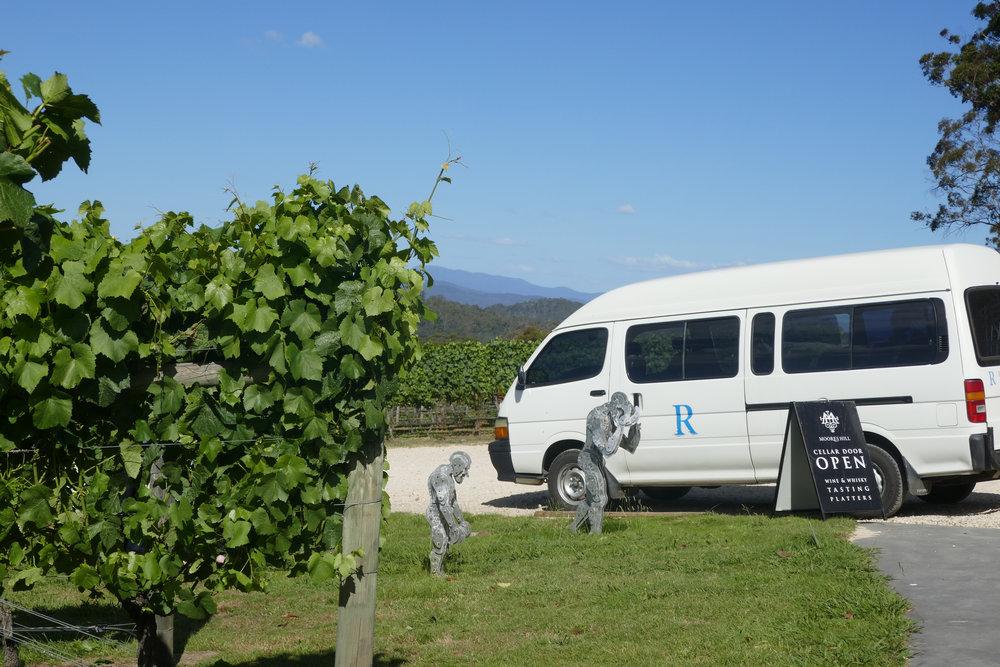 Rosevears tours.jpg