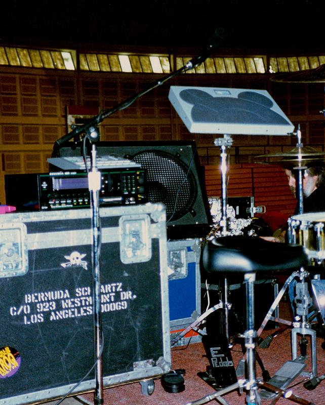 BermudaSchwartz_1994.jpg