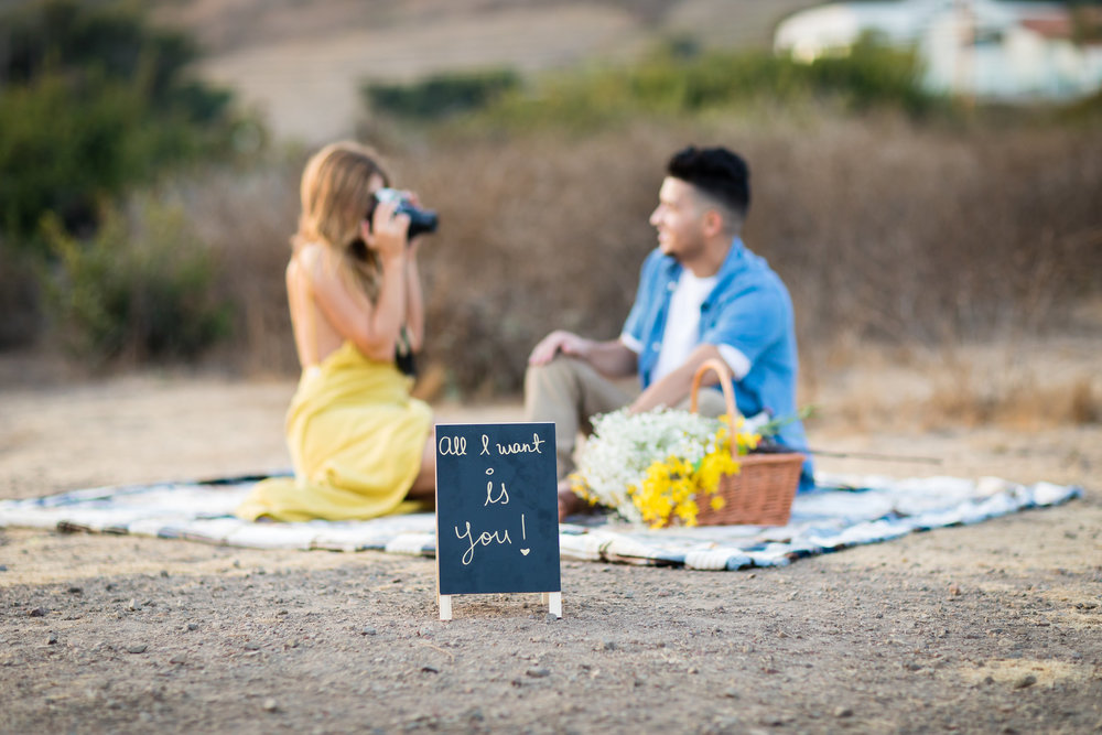 Styled Engagement Photoshoot in Malibu.jpg