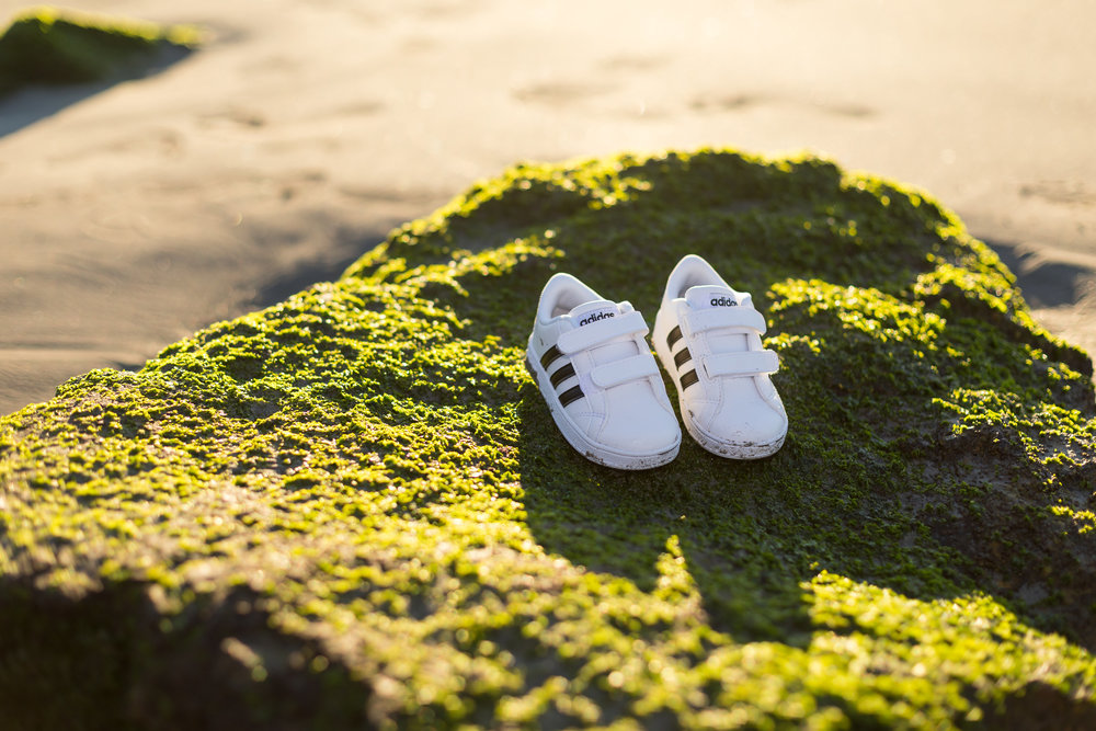 kid's adidas shoes against green moss on a rock in seal beach ca.jpg