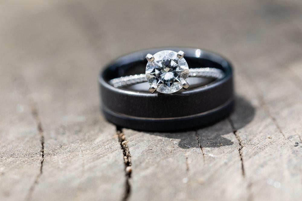 Ring shot on a tree stump.jpg