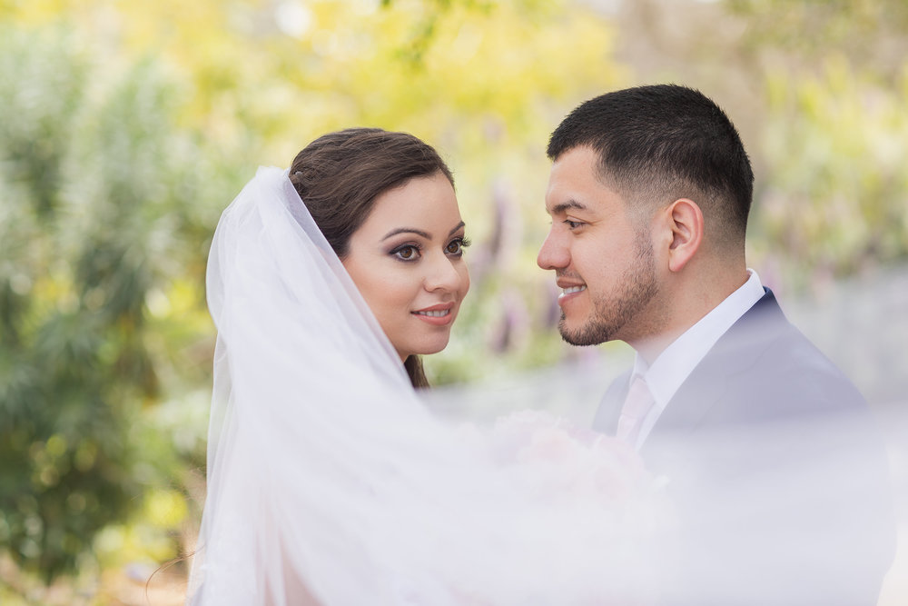 Bride and groom wrapped in veil.jpg