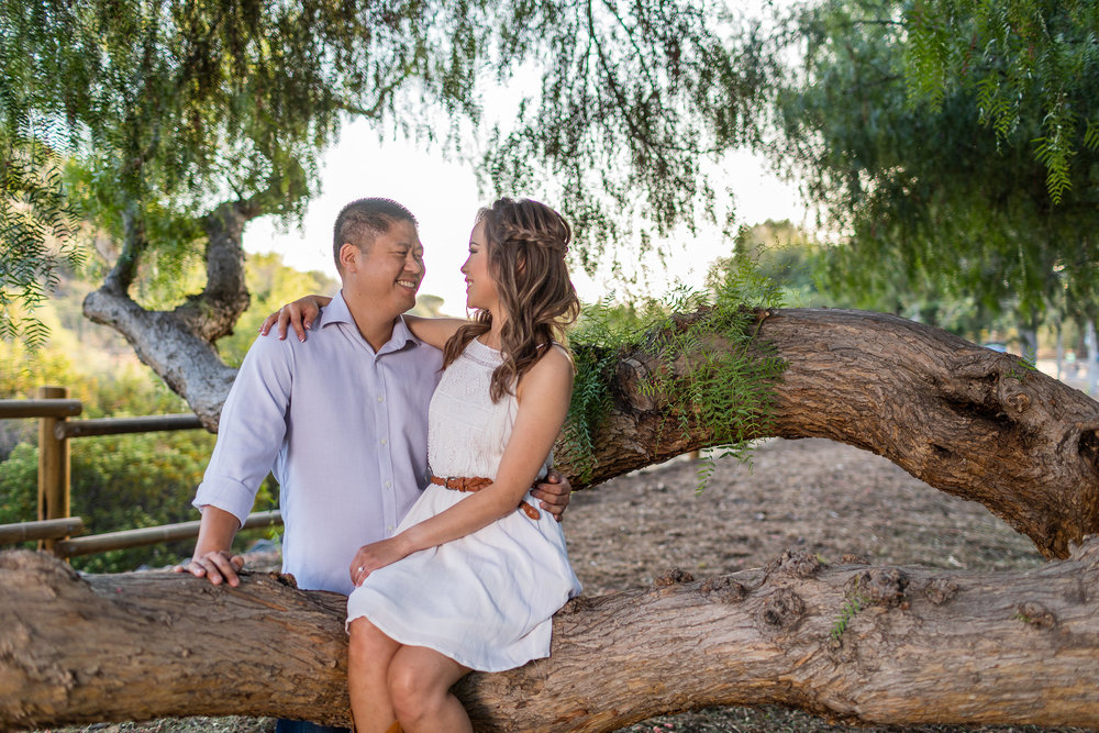 Photo of Happy Engaged Couple Sitting in a Tree.jpg