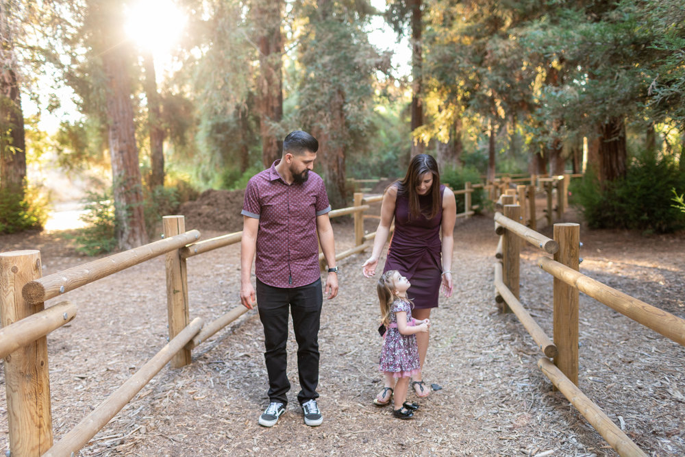 ! Lifestyle Portrait of Young Family Walking in the Redwoods.jpg