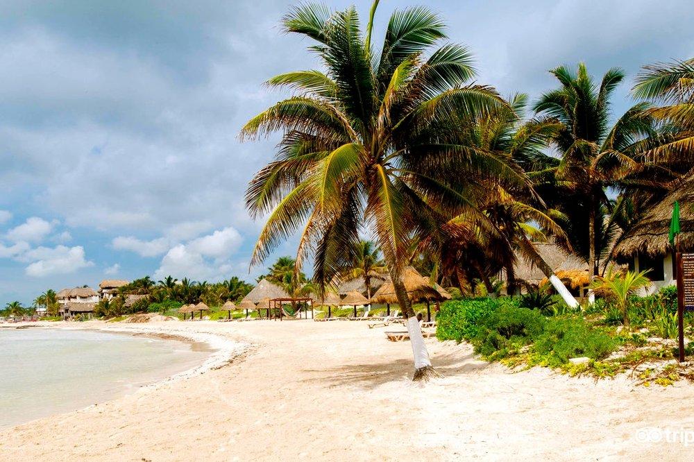 beach--v7803973.jpg