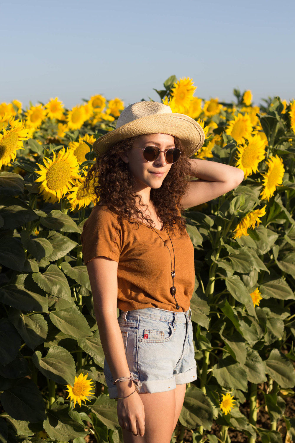 sunflower fields and summer vibes | kelly boylan photography