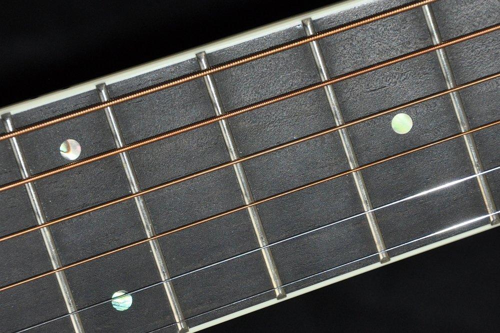 Ebenholz-Griffbrett ( ebony fretboard )