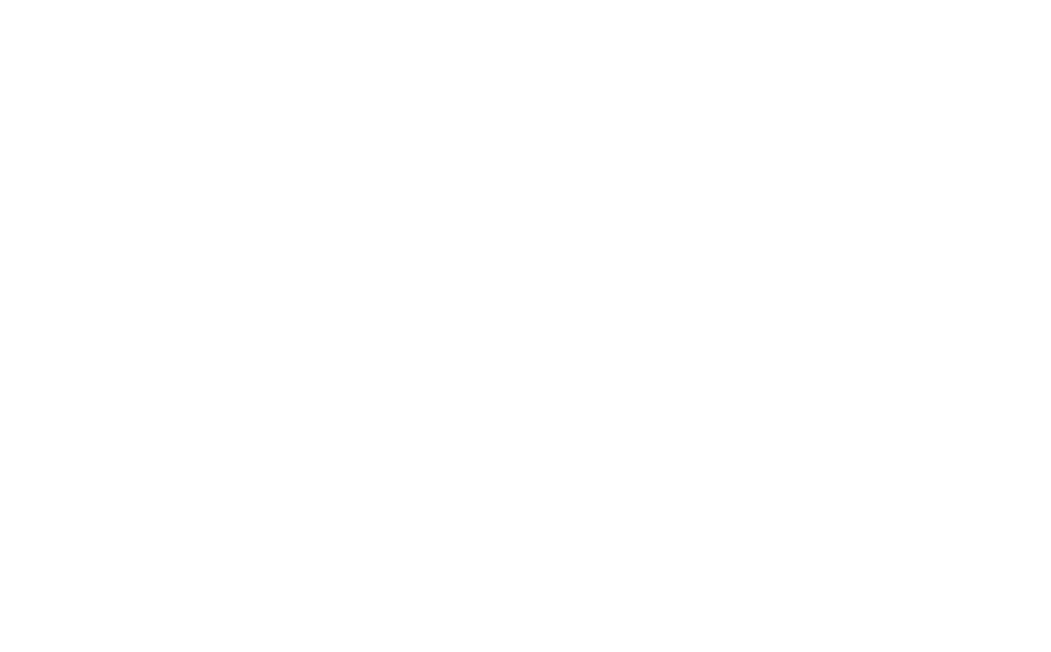 wild hearts collective