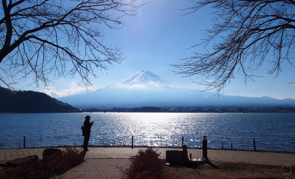 January 2014: Kawaguchiko, japan