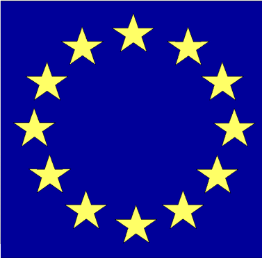 European Union: Strategic framework for category launch in the U.S