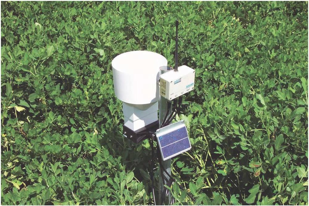 Field-Sensor.jpg