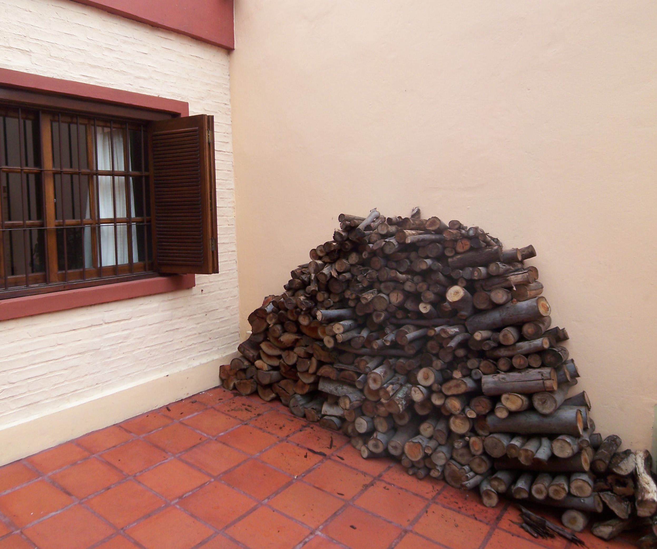 Stack of mixed wood at the front of our house