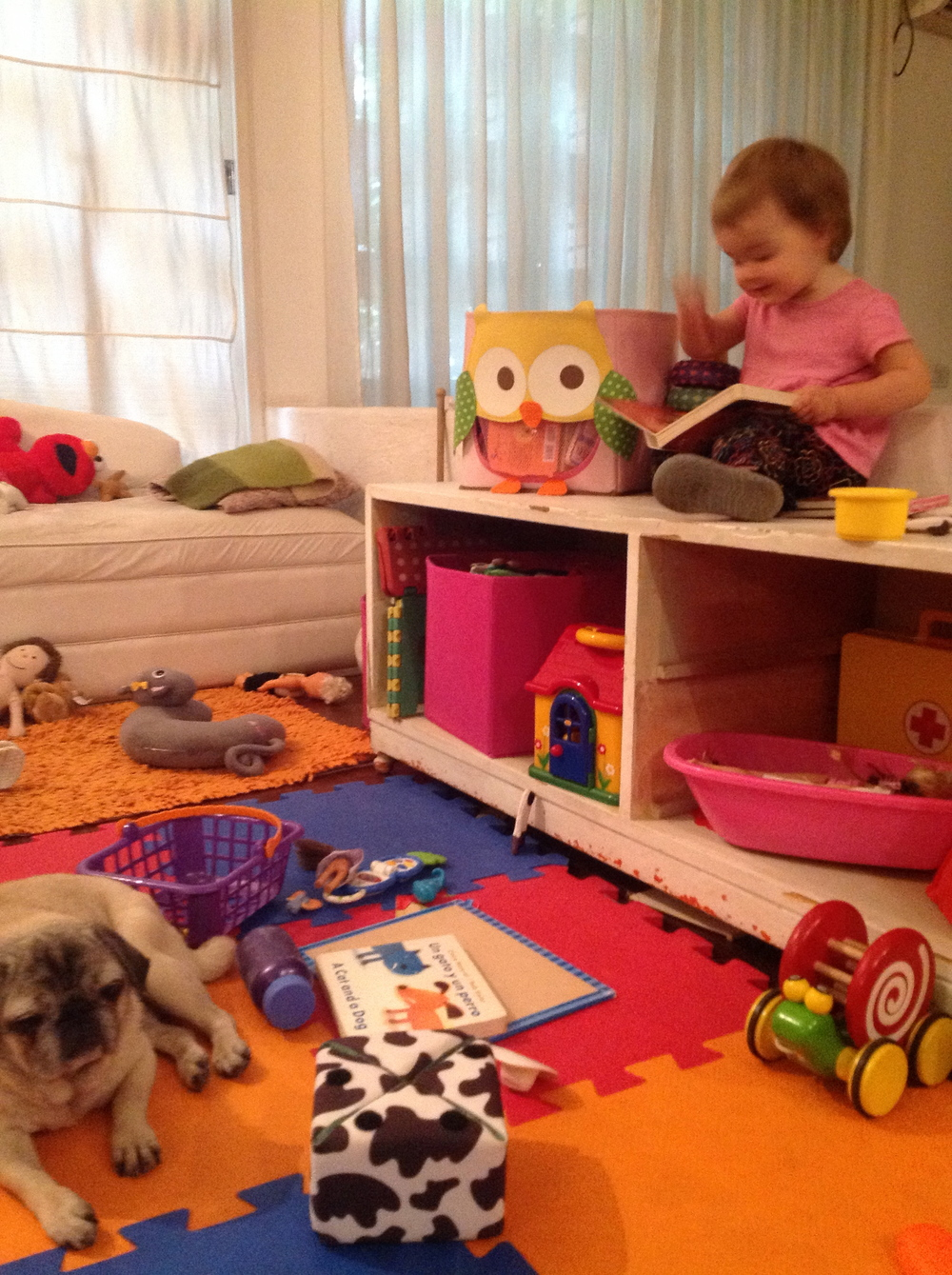 Little F (along with Paloma the Pug) in the play area. Look at all the STUFF!