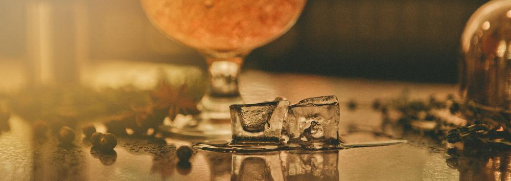 Gin Bar-491.jpg
