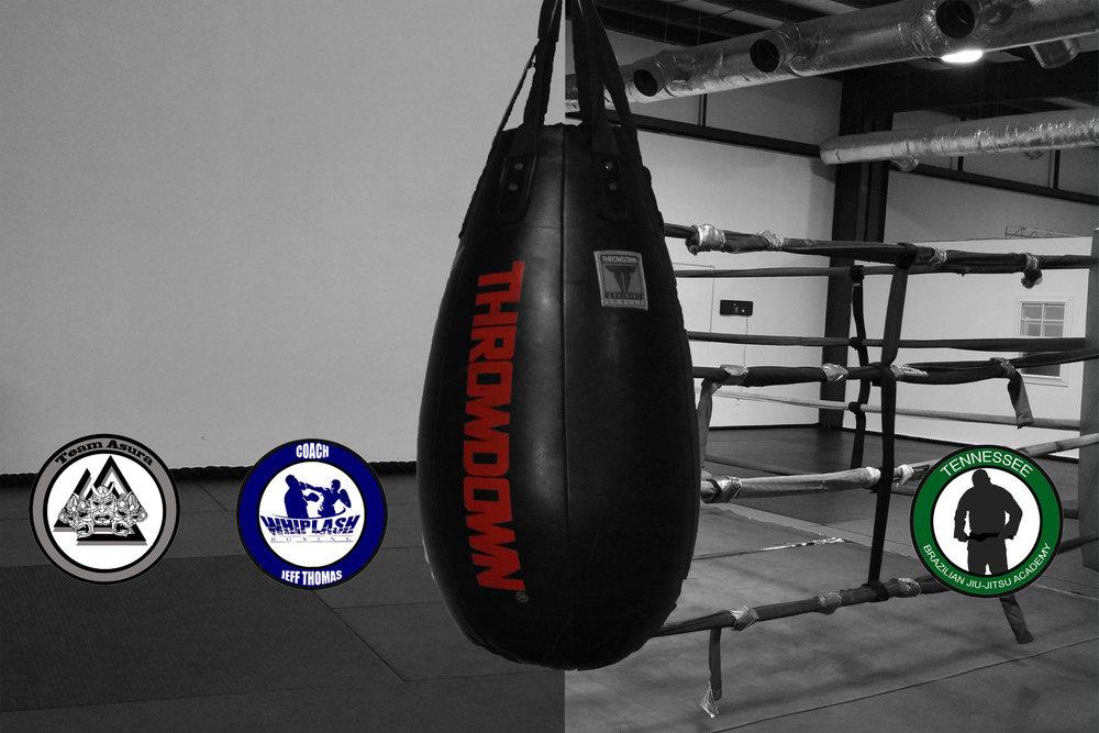 boxing, jiu jitsu, kickboxing, wrestling, kids classes, tae kwon do