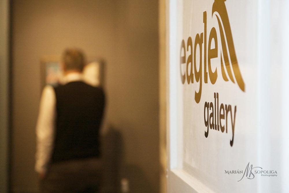 eagle-gallery049.jpg
