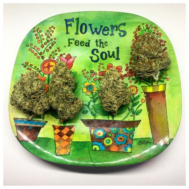 Flowers feed the soul• • • • #newgrowthorganics #newgrowth #NGO #organicallygrown #sustainablygrown #notill #cannabis #weedstagram #marijuana #calibud #ganja #californiacannabis #labamba #caliweed  #organic #sustainable #californiaweed #weshouldsmoke #growyourown #knowyourgrower #x10 #ninalimón #whitefireog