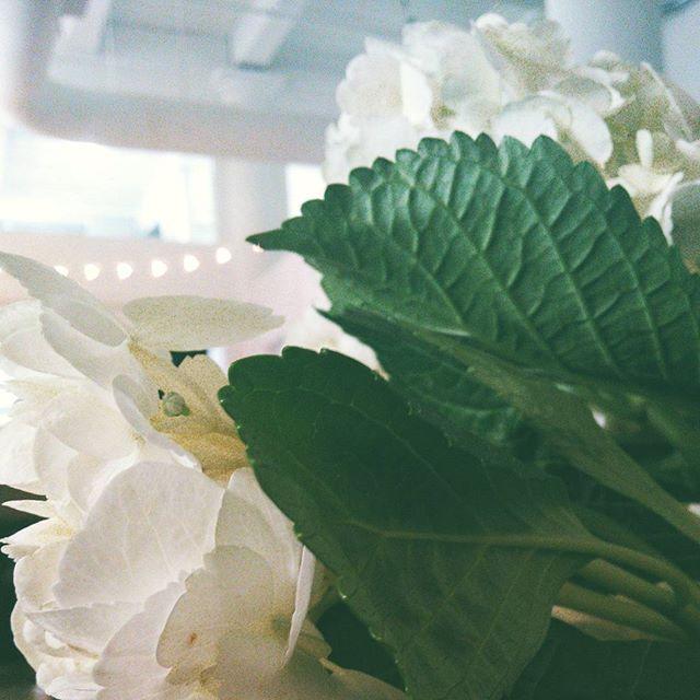 #floral, #weddings, #trendy, #theknot, #diywedding.