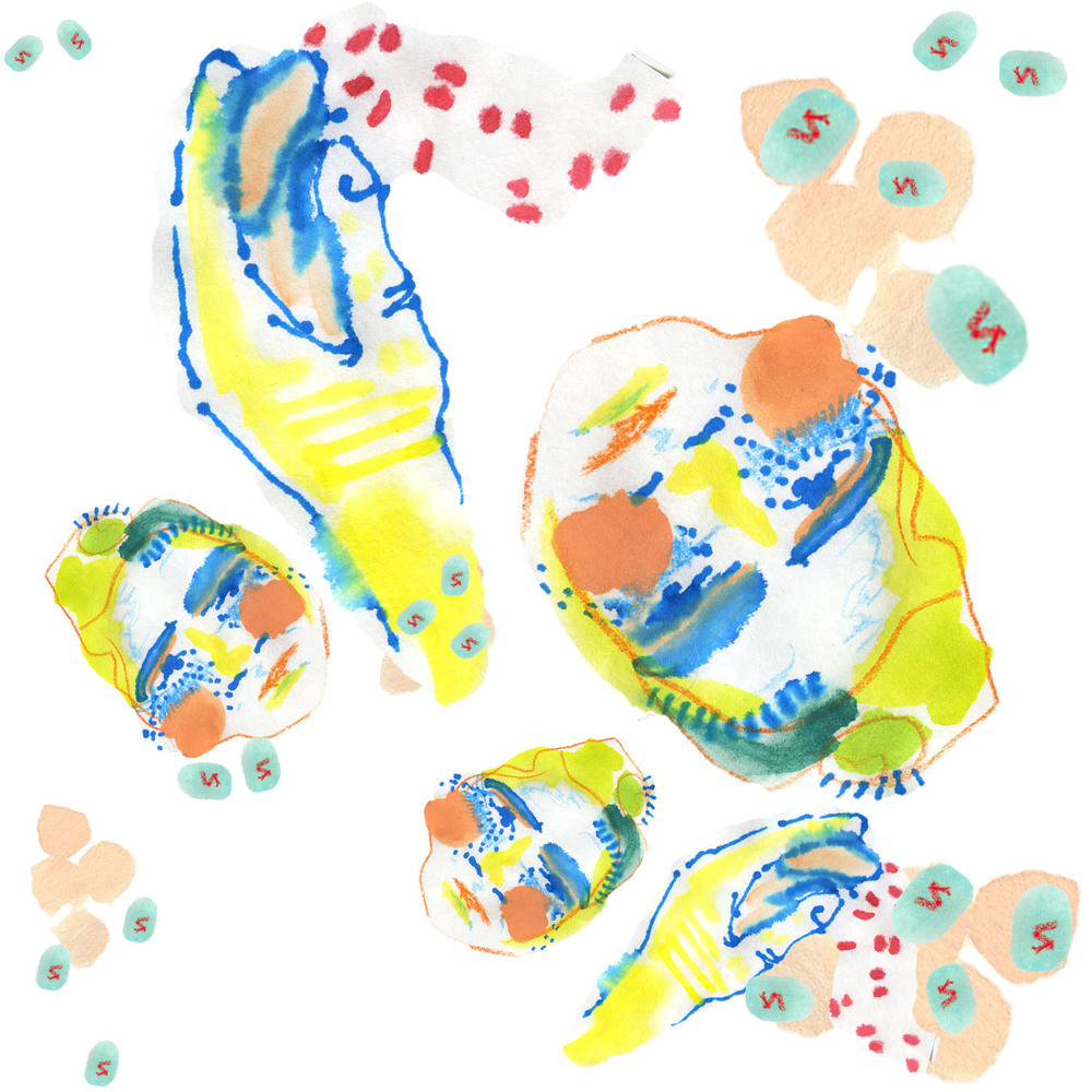 Jennifer Laflamme-4 Textile Design Year 2.jpg