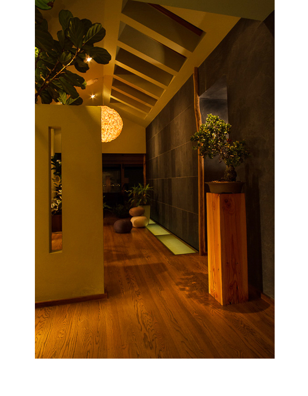 What once was a narrow hallway leading to the 30' living room, was broadened using under-lit acrylic, slate walls and tree trunks.
