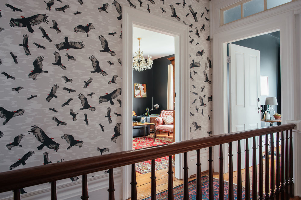 Kate Golding Turkey Vulture wallpaper // Modern wallcoverings and interior decor.