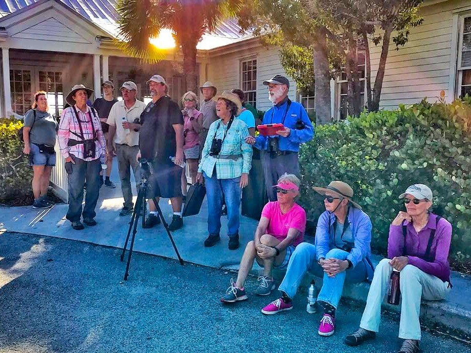 Christmas In The Florida Keys 2020 Key West Christmas Bird Count 2019 2020 — Florida Keys Audubon Society