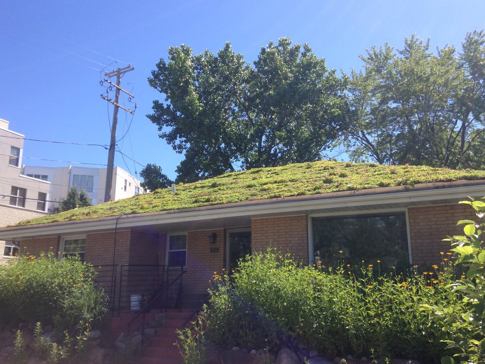 RRF Green Roof