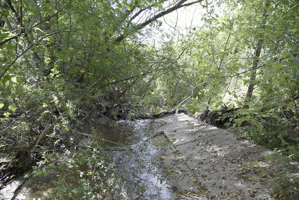 Before: South Branch Creek