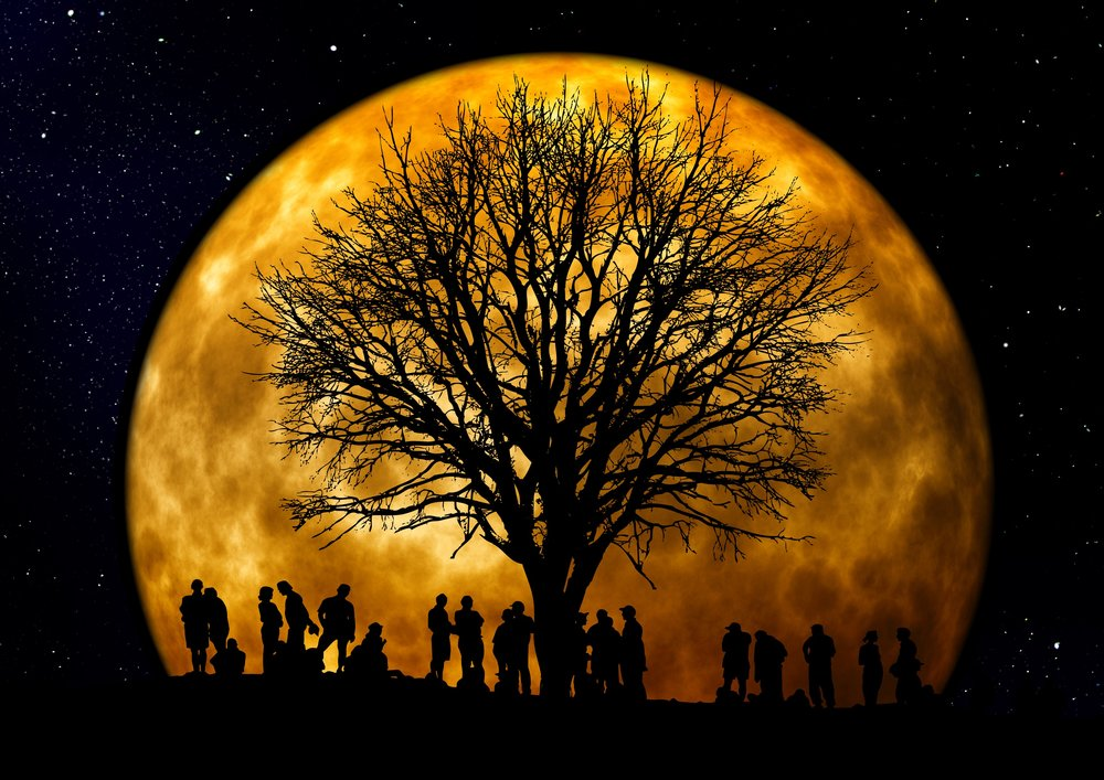 Photo by Gerd Altmann from Pexels https://www.pexels.com/photo/silhouette-of-people-standing-neat-tree-under-the-moon-22138/