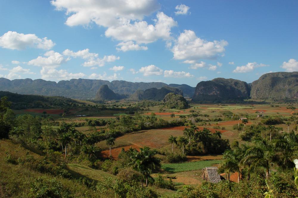 Utsikten gjennom vinduet i Vinales. Cuba