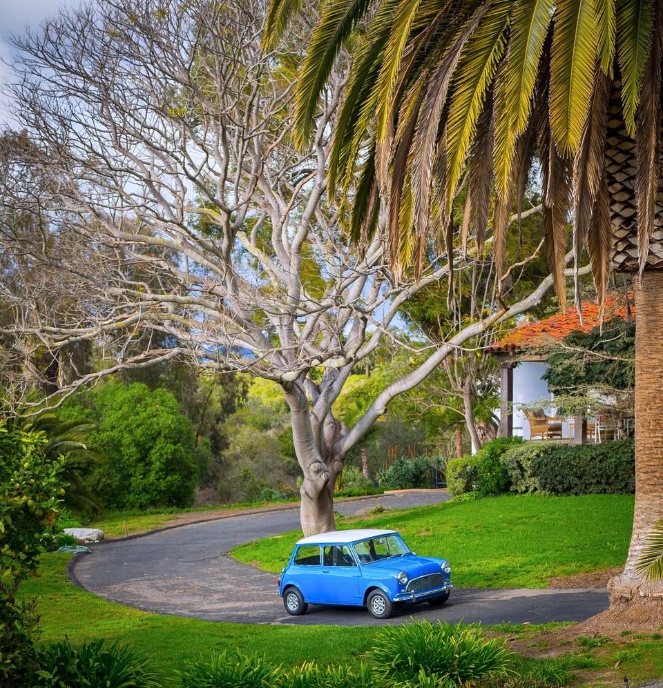 67 Austin Mini Jeff Carmel 3.jpg