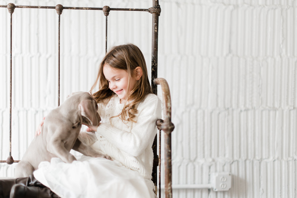 Babies + Weimaraner Puppies Photo Session - Sweet Juniper Photography