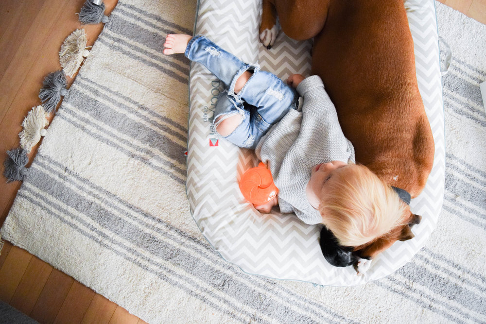 Machine Washable Nursery Rugs - Kids Room Rugs - Lorena Canals Rugs