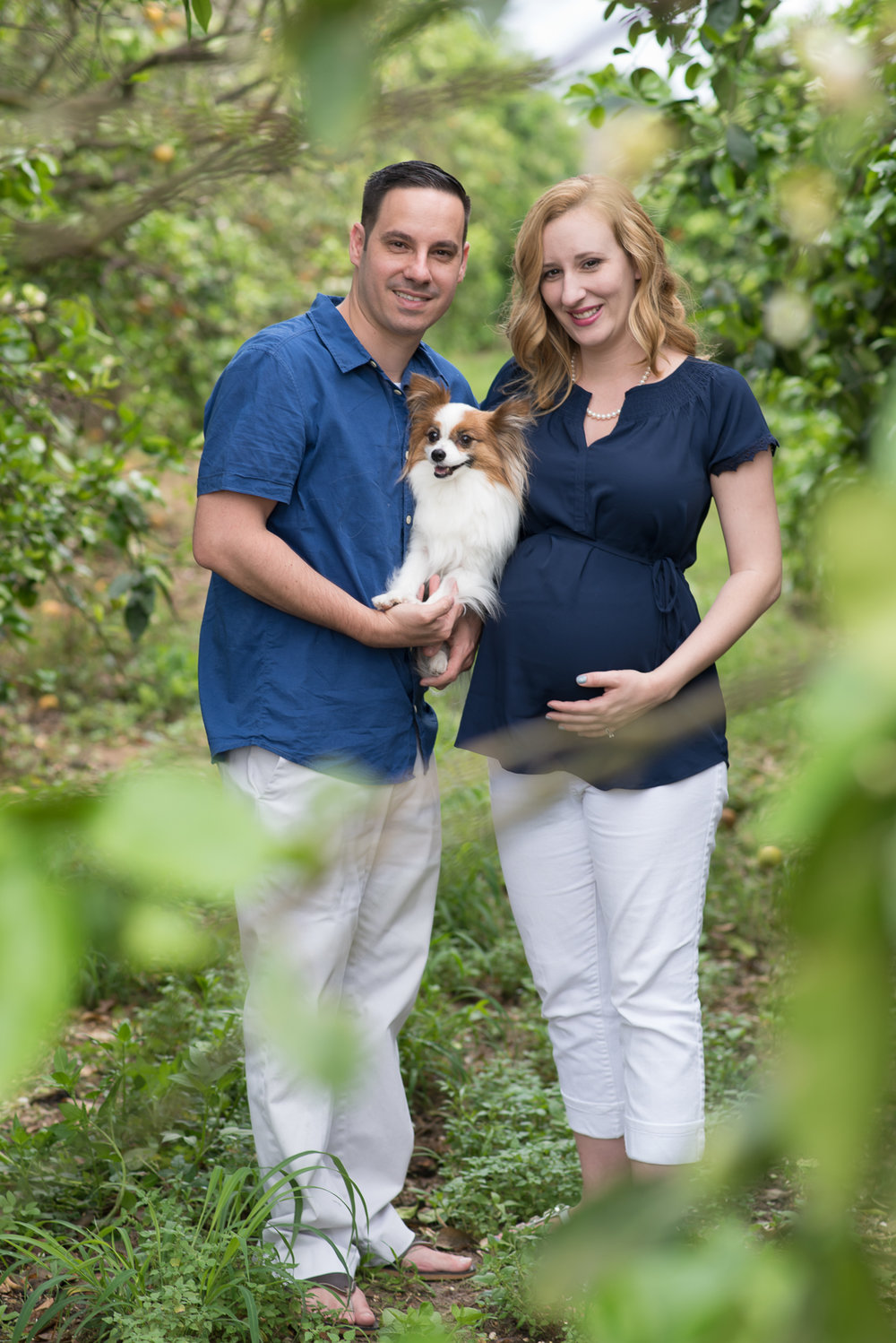Maternity Photos - Puppy Maternity Photos by Corner House Photography