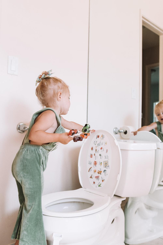 Potty Training Tricks + Tips -- Lid Buddies