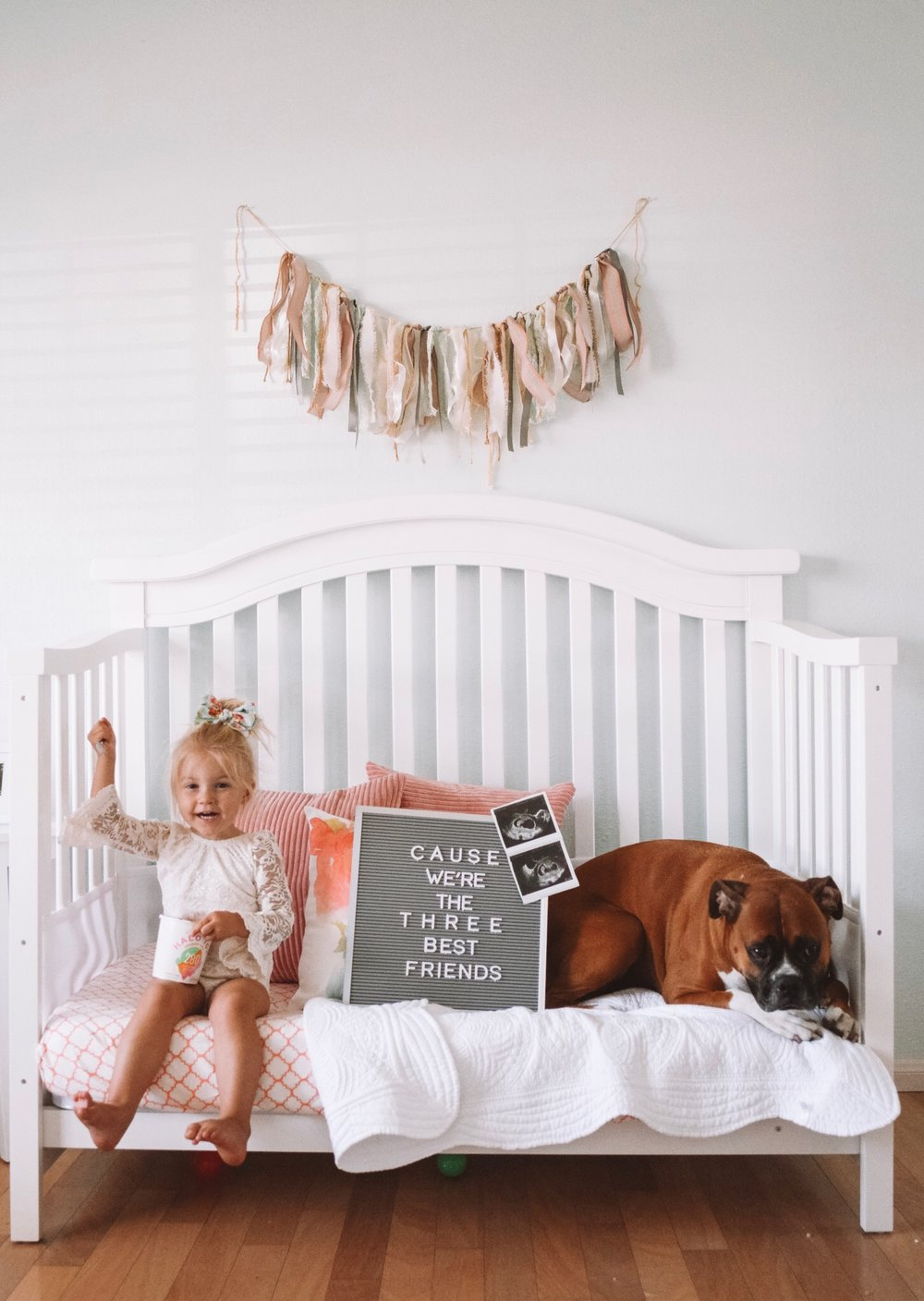 Cute Pregnancy Announcement for Second Baby - Cute Pregnancy Announcements with Dogs
