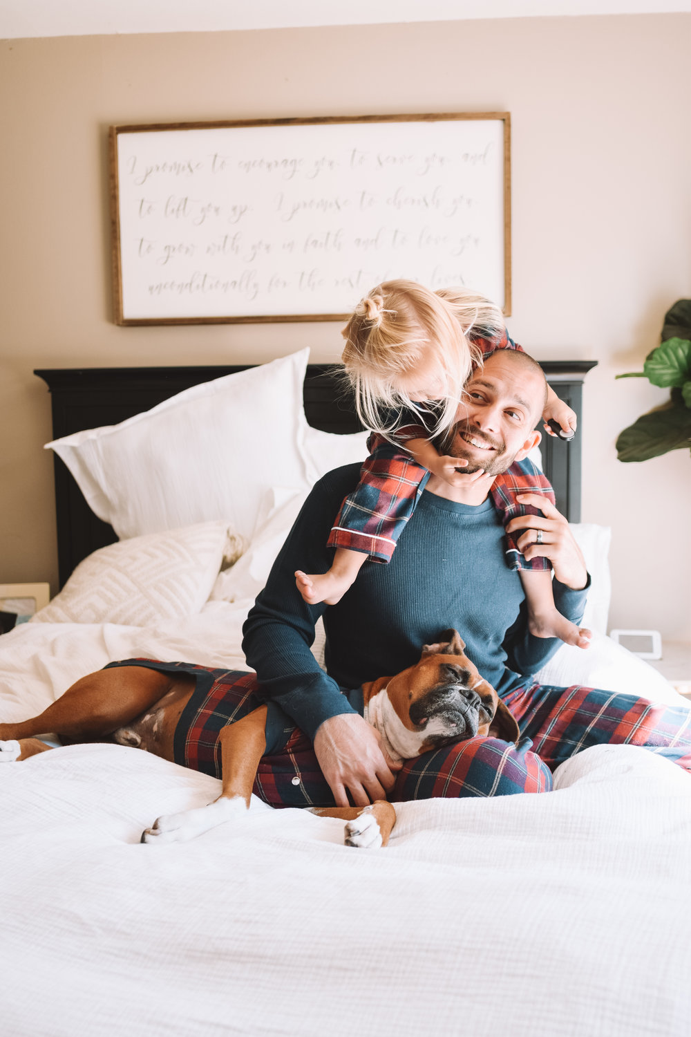 Matching Family Flannel Pajamas Dog Pajamas -- The Overwhelmed Mommy Blogger
