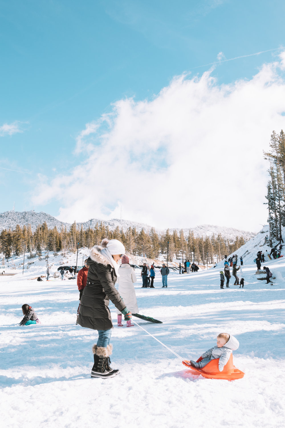 Things to Do in Reno with Kids - The Overwhelmed Mommy Blogger