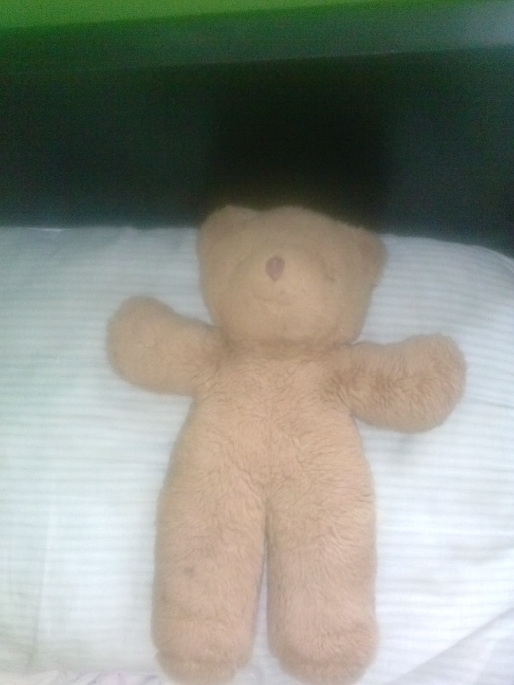 The Teddy Bear That The Little Boy Gave Me. I Still Have It To This Day.