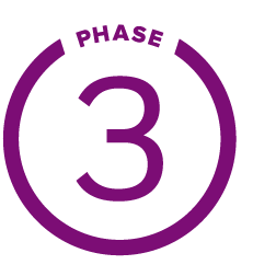 THREE_circle_phase.png