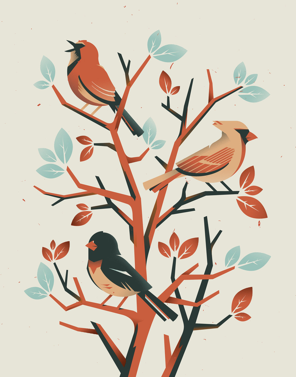birds_new_colorway2.jpg